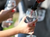 heritage-vineyard-5k-155